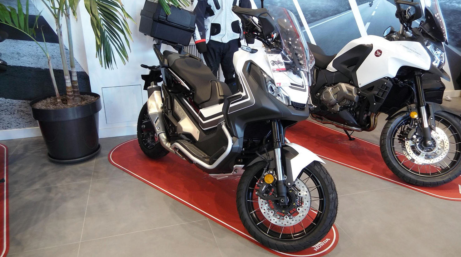Honda X-ADV Color Blanco Perla Glare Mate